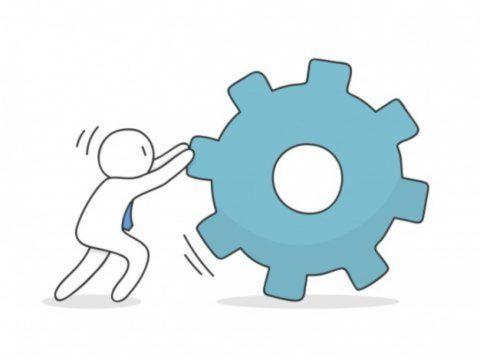 strategies for start-up survival